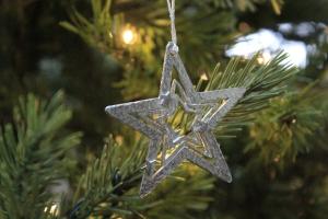 christmas-tree-pewter-star